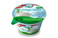 Cottage Cheese (Hüttenkäse)