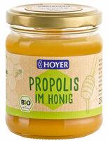 Propolis im Honig